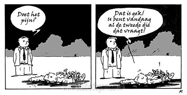 Cartoons Strips En Illustraties Door Cartoonist